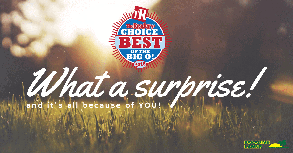 Wow–you nominated us for the 2016 Readers' Choice Awards!