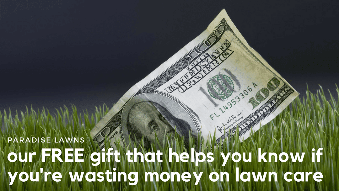 Our FREE gift that helps you know if you're wasting money on lawn care