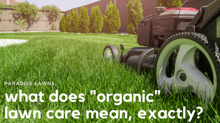 what does organic lawn care mean