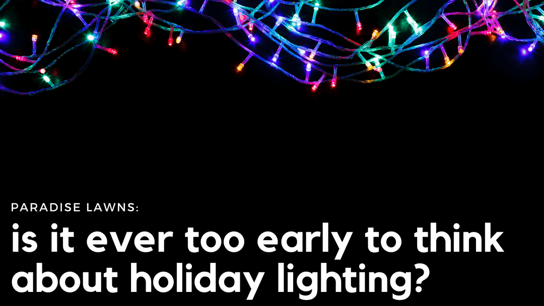 Is it ever too early to think about holiday lighting?