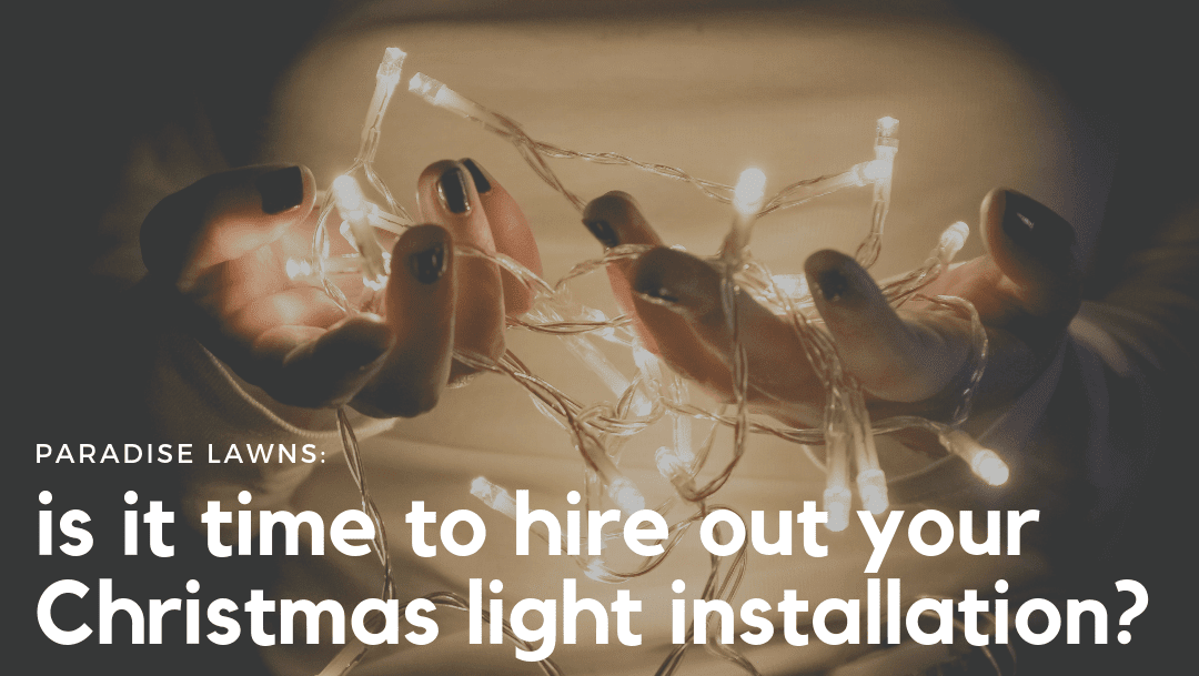Is it time to hire out your Christmas light installation?