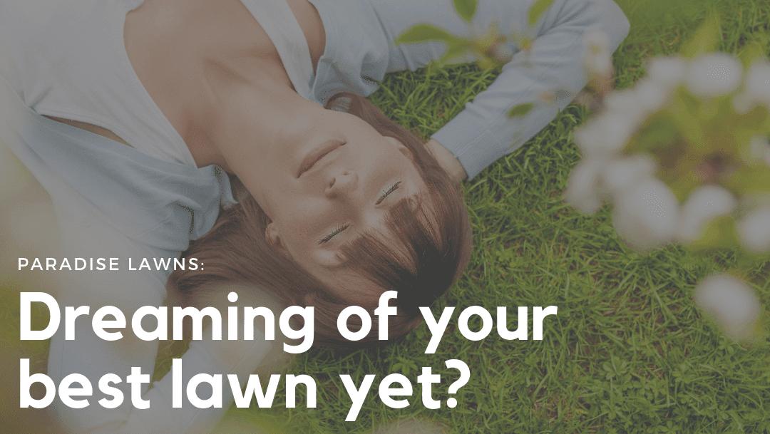omaha organic lawn care