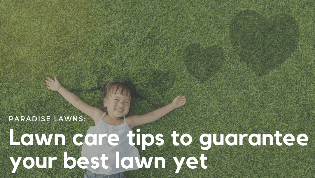 6 lawn care tips to guarantee your best lawn yet