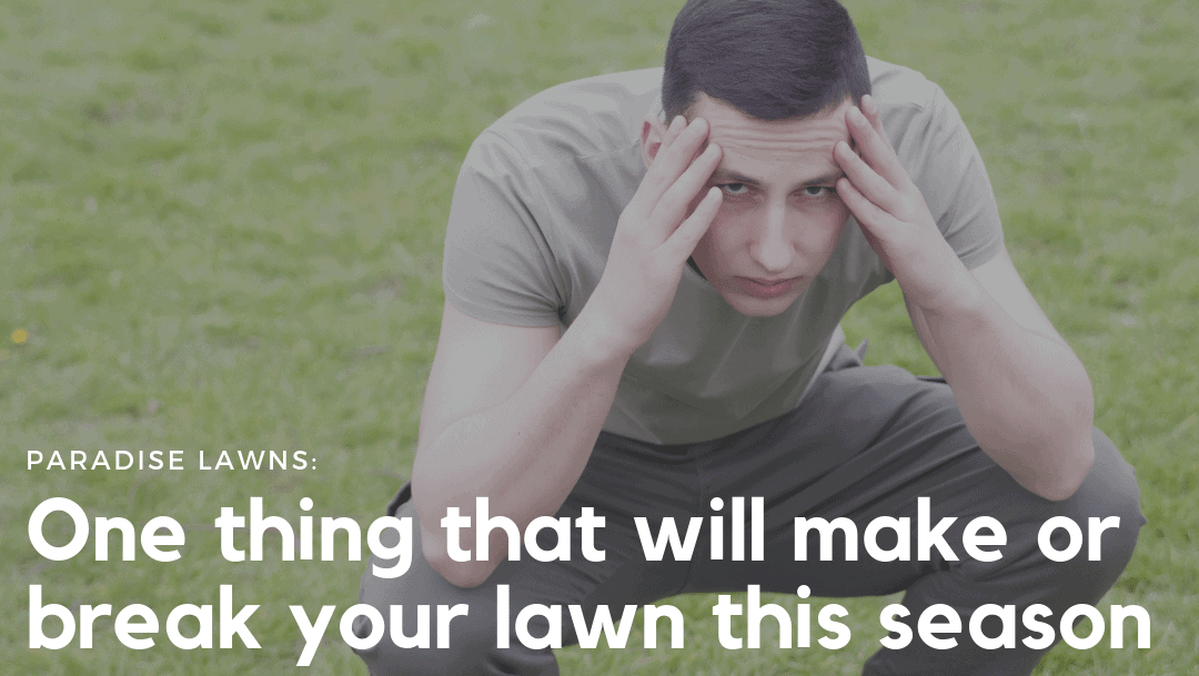 One thing that will make or break your lawn this season