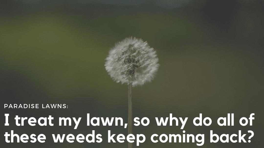 omaha lawn care