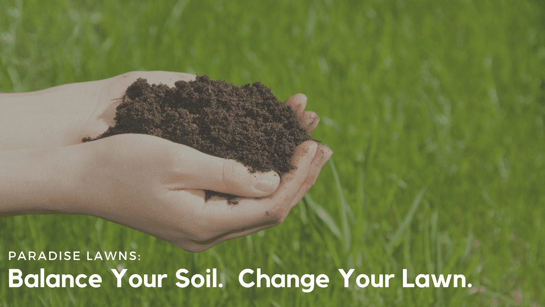 Balance Your Soil. Change Your Lawn