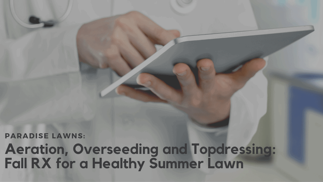 Aeration, Overseeding and Topdressing:  Fall RX for a healthy Summer Lawn