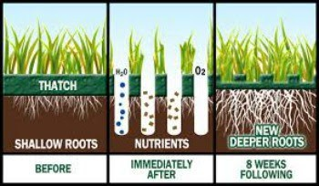 Infographic showing before and after aeration results