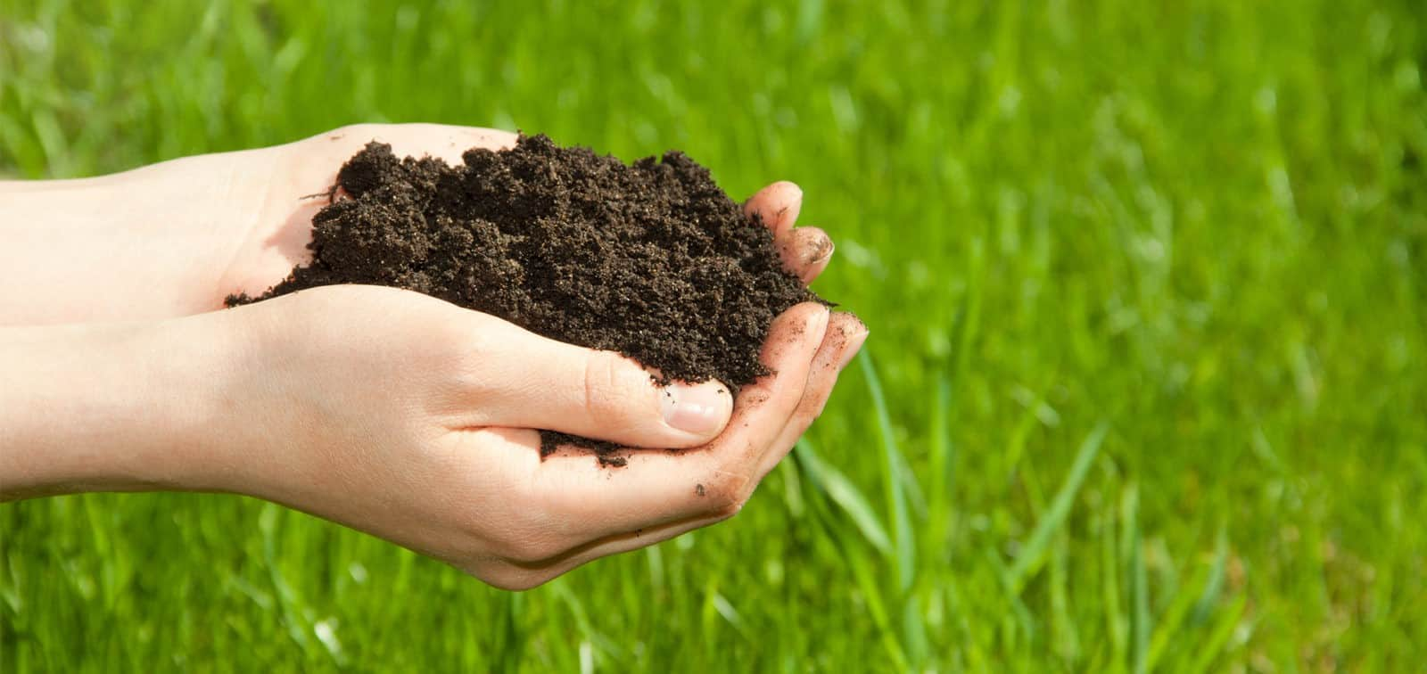 hand holding compost which provides nutrients to lawns