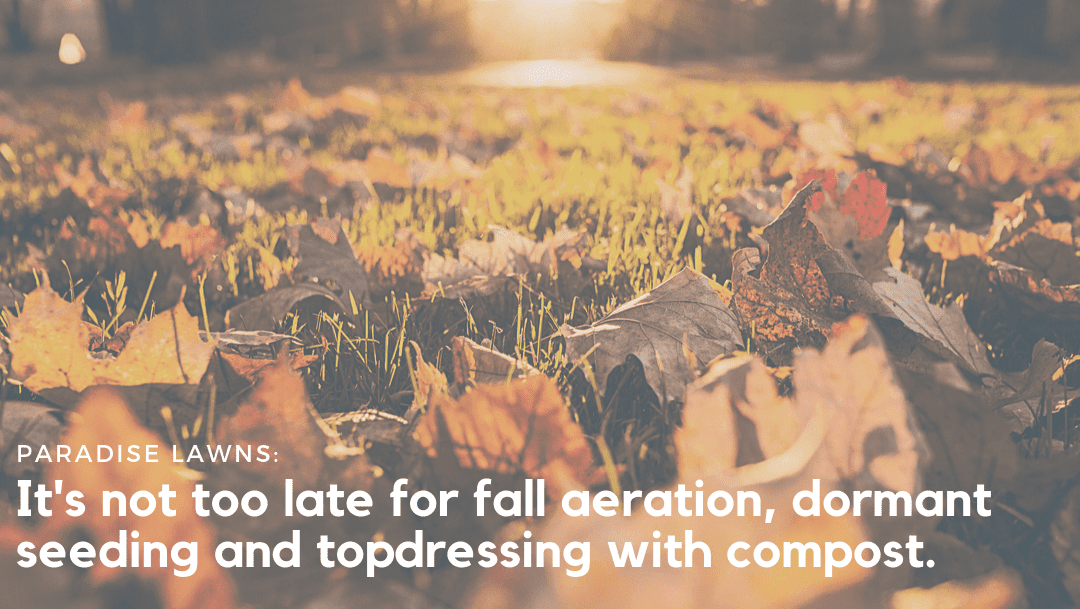 It's not too late for fall aeration