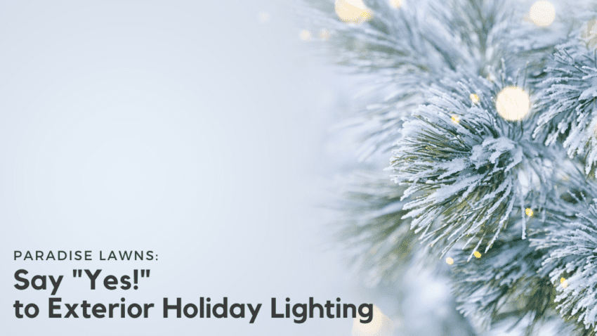 Exterior holiday lighting