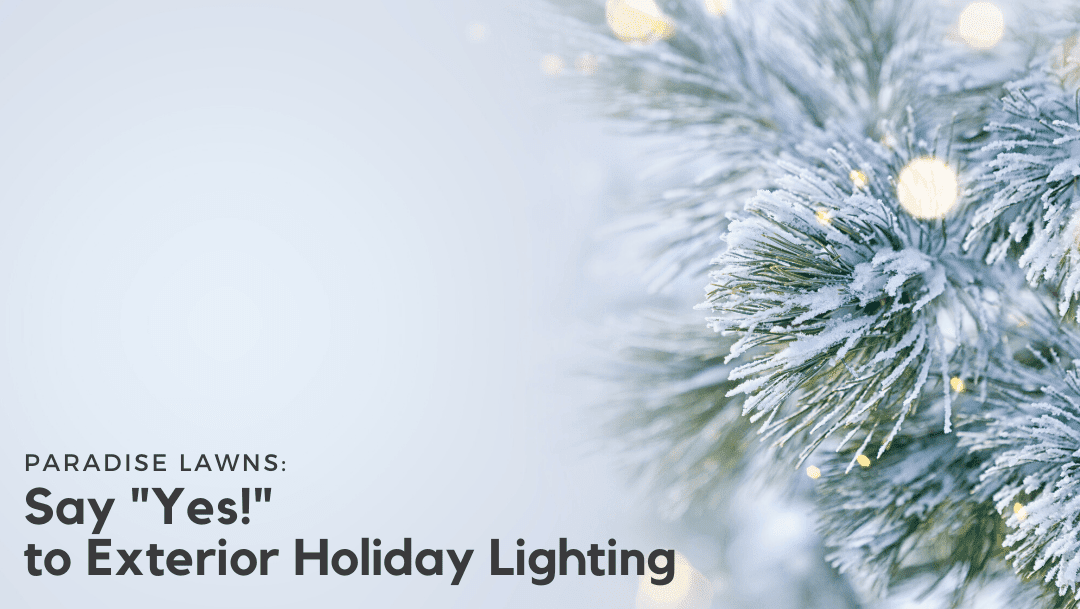 "Say ""Yes!"" to Exterior Holiday Lighting"