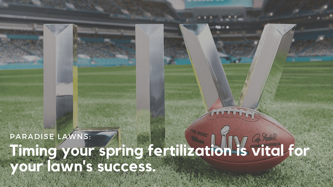 Timing your spring fertilization is vital for your lawn's success