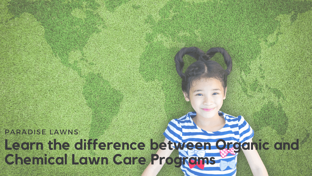 Learn the difference between Organic and Chemical Lawn Care Programs