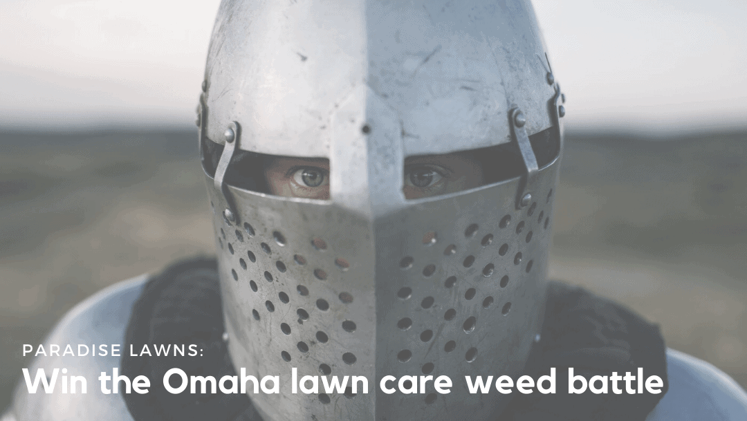Win the Omaha lawn care weed battle