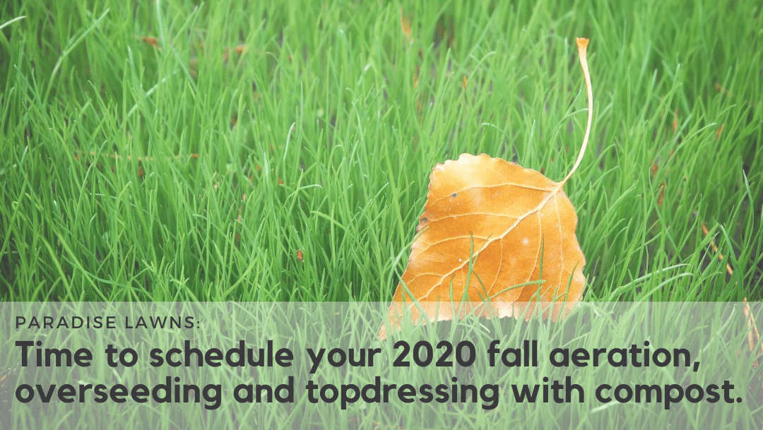 Time to schedule your 2020 fall aeration, overseeding and topdressing with compost