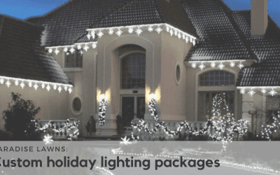 What is included in a custom holiday lighting package?