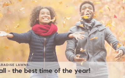 Why Fall Really is the Best Time of Year
