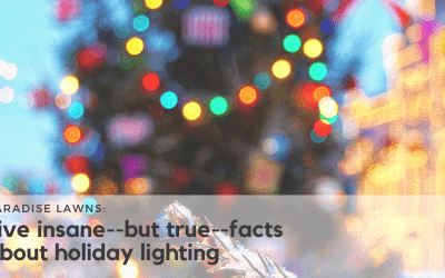 5 insane but true facts about holiday lighting